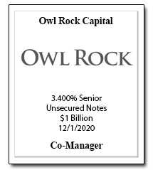 CP_131_Owl